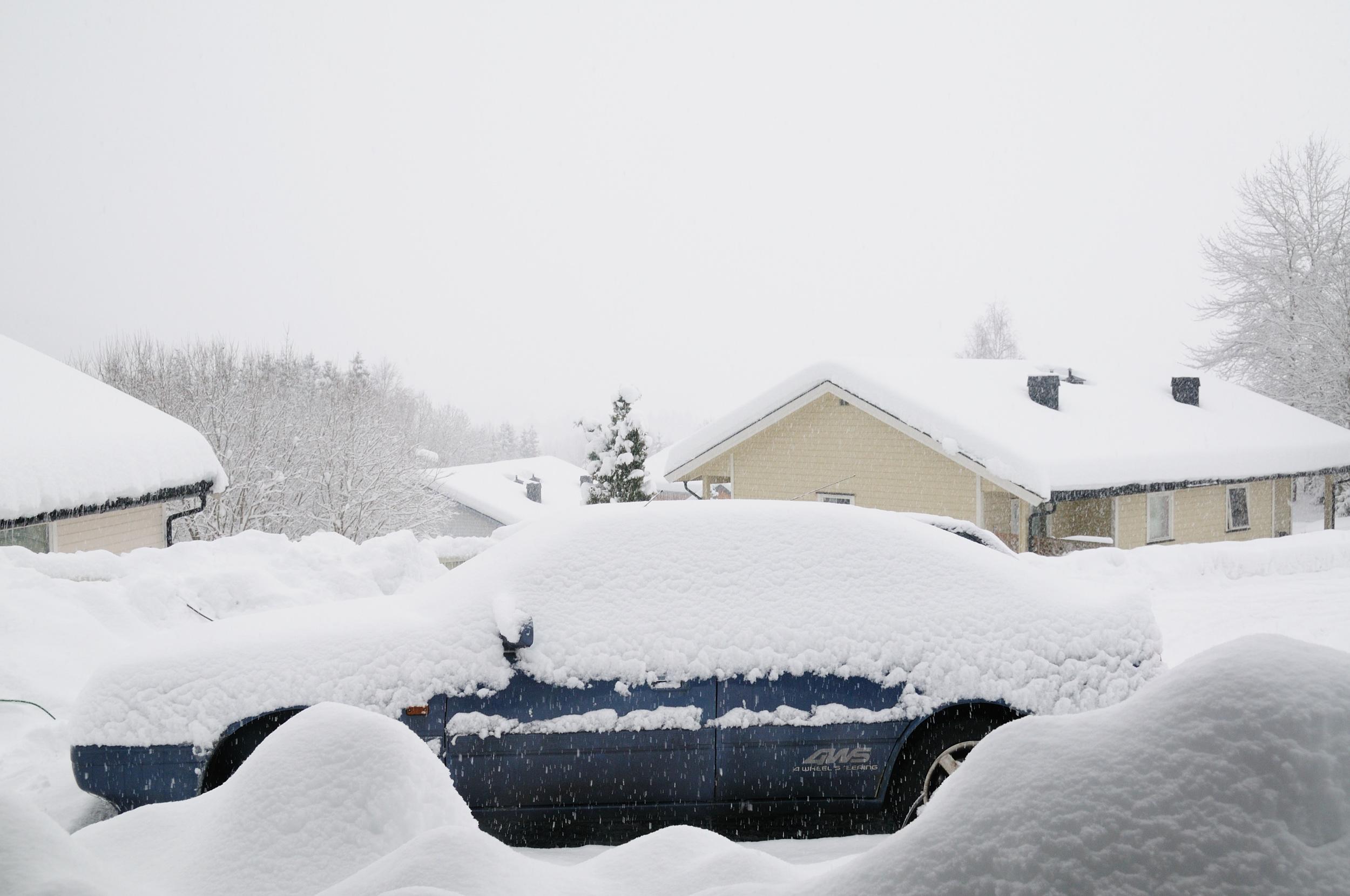 Fucking snow! DSC_0460pp.jpg